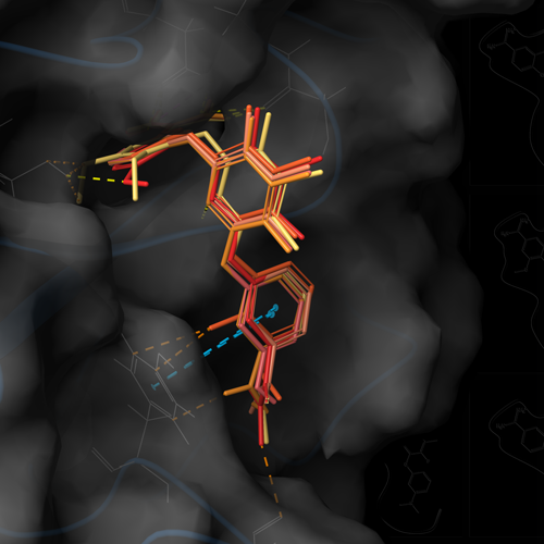 Introduction To Molecular Modeling For Drug Discovery Schrodinger