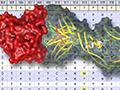 SARvision Biologics Thumbnail